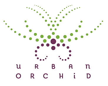 The Urban Orchid